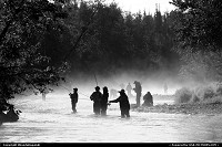 Fishing the Russian River for Sockeye salmon on a foggy morning. Cooper Landing, Alaska.