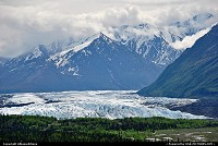 Not in a City : Matanuska Glacier, east of the city of Palmer, heads in the Chugach Mountains and trends northwest 27 miles. Some 18,000 years ago the glacier reach all the way to the Palmer area. The glacier's average width is 2 miles and here at its terminus it is 4 miles wide. The glacier has remained fairly stable the past 400 years. For more Alaska webgalleries: www.album-editions.nl & www.alaska-editions.nl