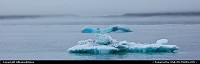 Icebergs in the chilly waters of the Prince William Sound at the foot of the Columbia Glacier. Fot more Alaska webgalleries and travelblogs: www.album-editions.nl & www.alaska-editions.nl
