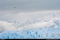 Photo by Albumeditions | Not in a City  Alaska, Landscape, Glacier