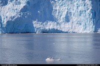 Spectacular blue face of the Aialik Glacier (Kenai Fjords NP - Alaska). For the complete webgallery: www.alaska-editions.nl