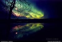 copyright, Denis C Anderson visit http://auroradude.com