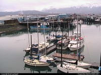 Photo by WestCoastSpirit | Seward  boat, king crab, fishermen