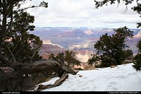 Arizona, Grand Canyon NP. Even with snow and under some boring cloudy sky, the visit is still VERY impressive !