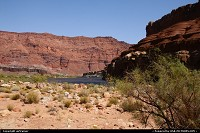 Arizona, The river Colorado at Lees Ferry.