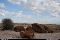 Photo by airtrainer |  Petrified Forest