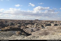 Petrified Forest / Painted Desert. A kind of no man's land with a stunning atmosphere, don't miss a visit if you're in the area !