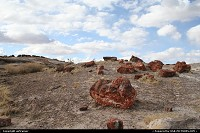 Petrified Forest NP. Leave your car and walk on a trail along the petrified trunks with their stunning colors, a truly great experience !