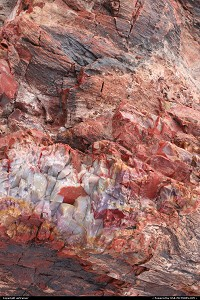Petrified Forest : close-up of a petrified wood, showing Mother Nature's work... Amazing !