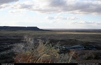Petrified Forest : Petrified Forest, worth a visit even in winter !