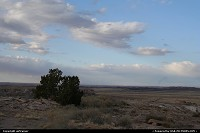 Petrified Forest NP, overview of the great deserted plains