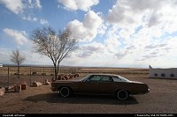 Photo by airtrainer |  Petrified Forest car, wood