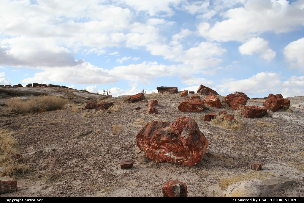Picture by airtrainer:ArizonaPetrified Foresttrail, trunk, petrified, colors