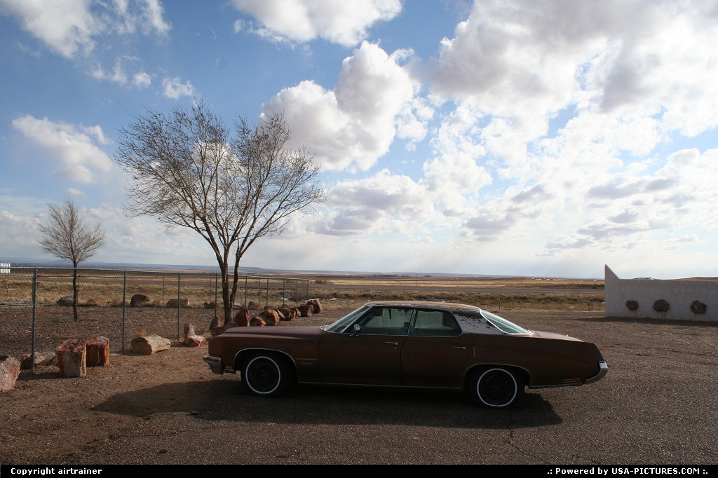 Picture by airtrainer:ArizonaPetrified Forestcar, wood