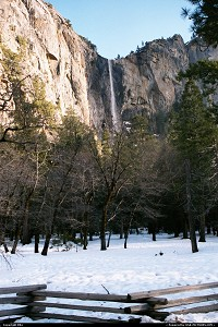 Photo by elki |  Yosemite waterfall, snow, tree