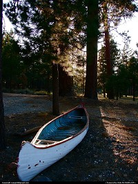 Big Bear Lake : Canoe resting under a tree