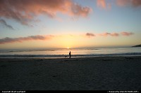 Photo by WestCoastSpirit | Carmel  beach, dog, sunset