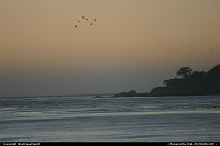 Photo by WestCoastSpirit | Carmel  beach, sunset, seagull