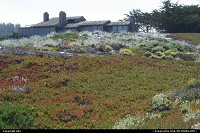Photo by elki | Hors de la ville  17 mile drive