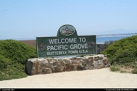 Pacific grove just between carmel and monterey