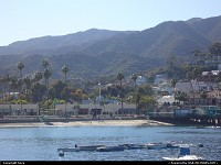 Not in a City : Catalina Island