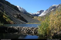 Magical creek, Lundy Canyon in Inyon National Forest. Best place around to see fall colors. Beavers habitat.