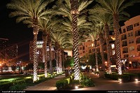 San Diego : Downtown San Diego, by night at the Gaslamp Quarter, near convention center. Nice, hot weather today!