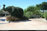 San Diego Zoo main entrance. You definitively have to stop and spend some time here. Maybe the best zoo I ever for us, worlwide.