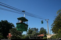 Gondola within the zoo. It's a great way to have a bird view of the massive San Diego Zoo.