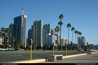 Downtown San Diego, in front of the bay at the harbor. California dreamin'
