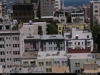 San francisco typical houses and building