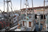 San Francisco : fishermanwharf, crab season