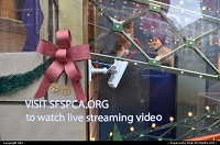 SFSPCA featuring kitten at macy's shop-windows, visit the sfspca.org to watch live streaming video.