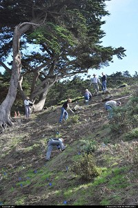 Photo by elki | San Francisco  coastal trail, volunteer