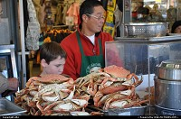 San Francisco : San francisco fishermanwharf, crab live cooking !!
