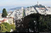 San Francisco : coit tower, view from lombart street