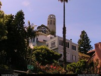 The famous Coit Tower in San Francisco, seen here from a nice neighborhood!