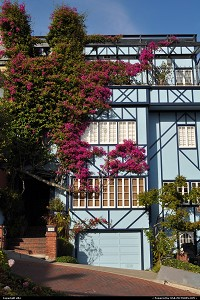 San Francisco : Lombard street, houses