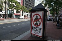 Only in San Francisco! Bus stop are here for humans only! On Market Street.
