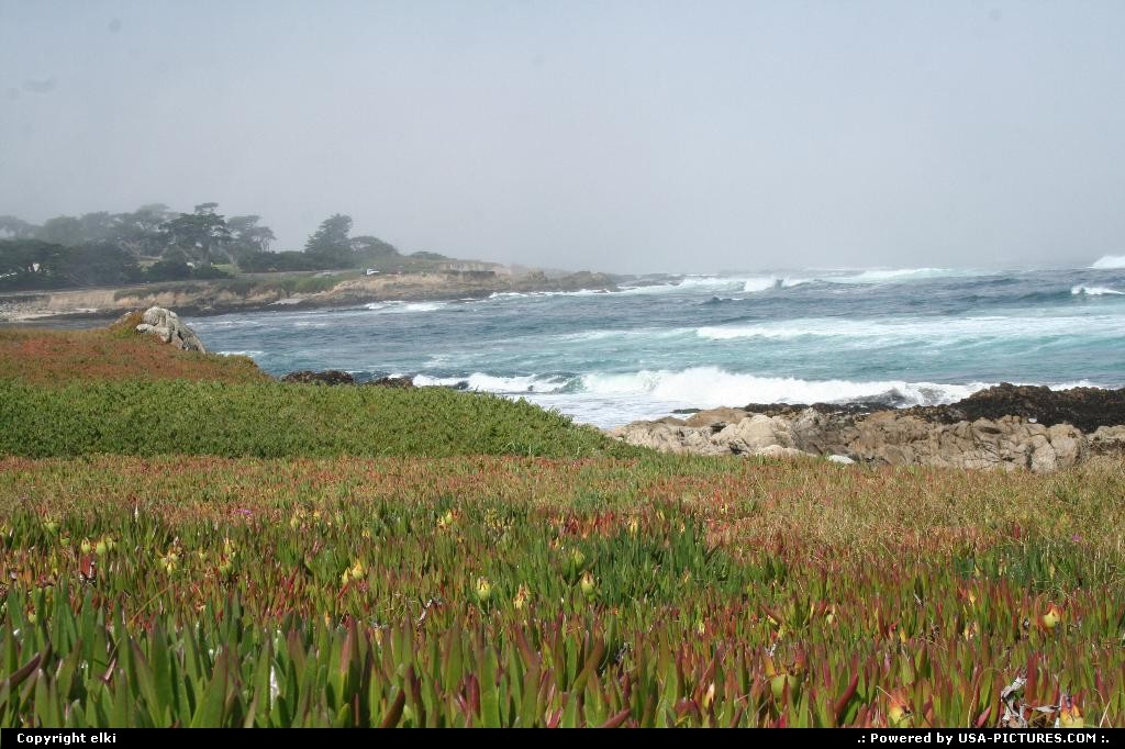 Picture by elki: Hors de la ville California   17 mile drive