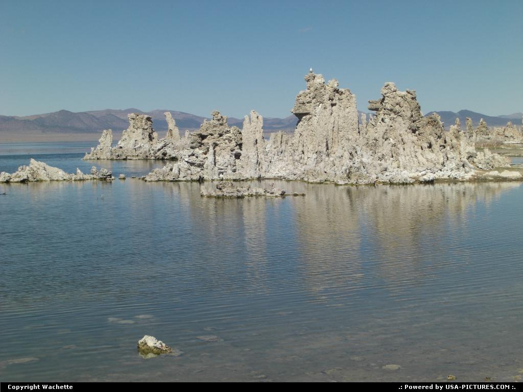 Picture by Wachette:Lee ViningCaliforniamono lake