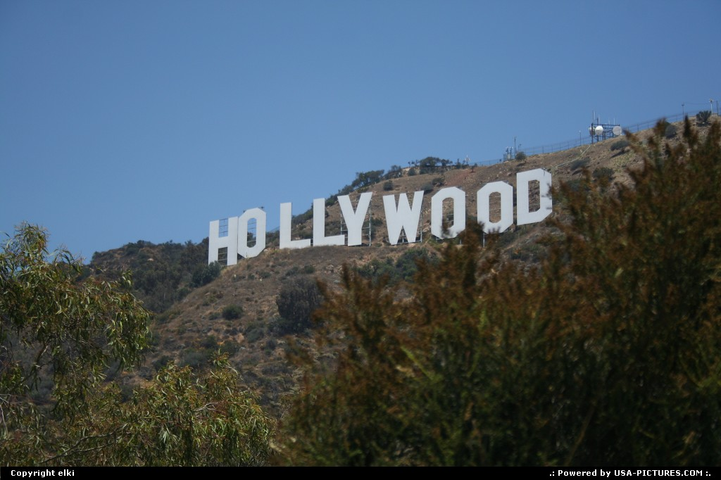 Picture by elki: Los Angeles California   hollywood