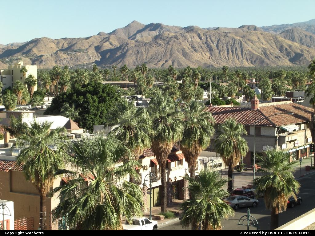 Picture by Wachette: Palm Springs California   palm spring