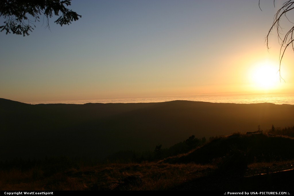 Picture by WestCoastSpirit:CaliforniaRedwoodsunset, forest