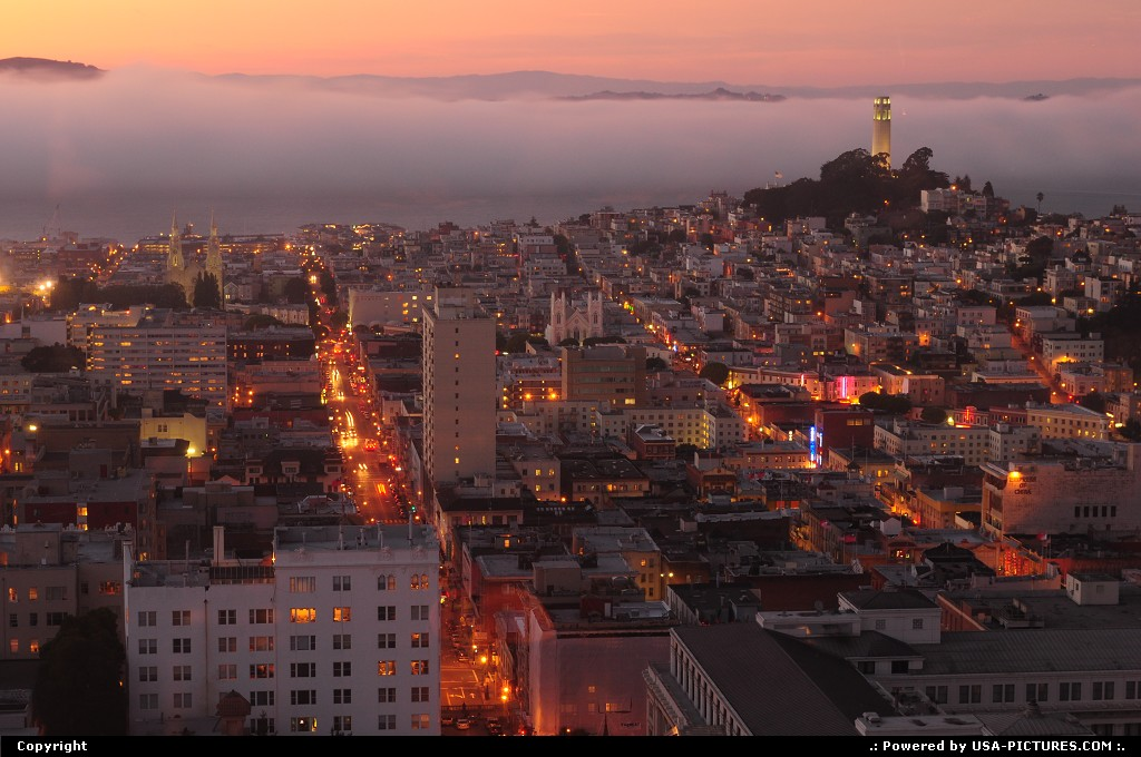Picture by elki:San FranciscoCaliforniasan francisco sunset coit tower