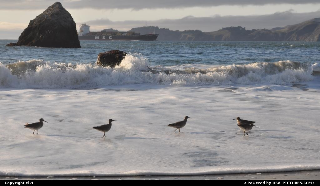 Picture by elki: San Francisco California   baker beach