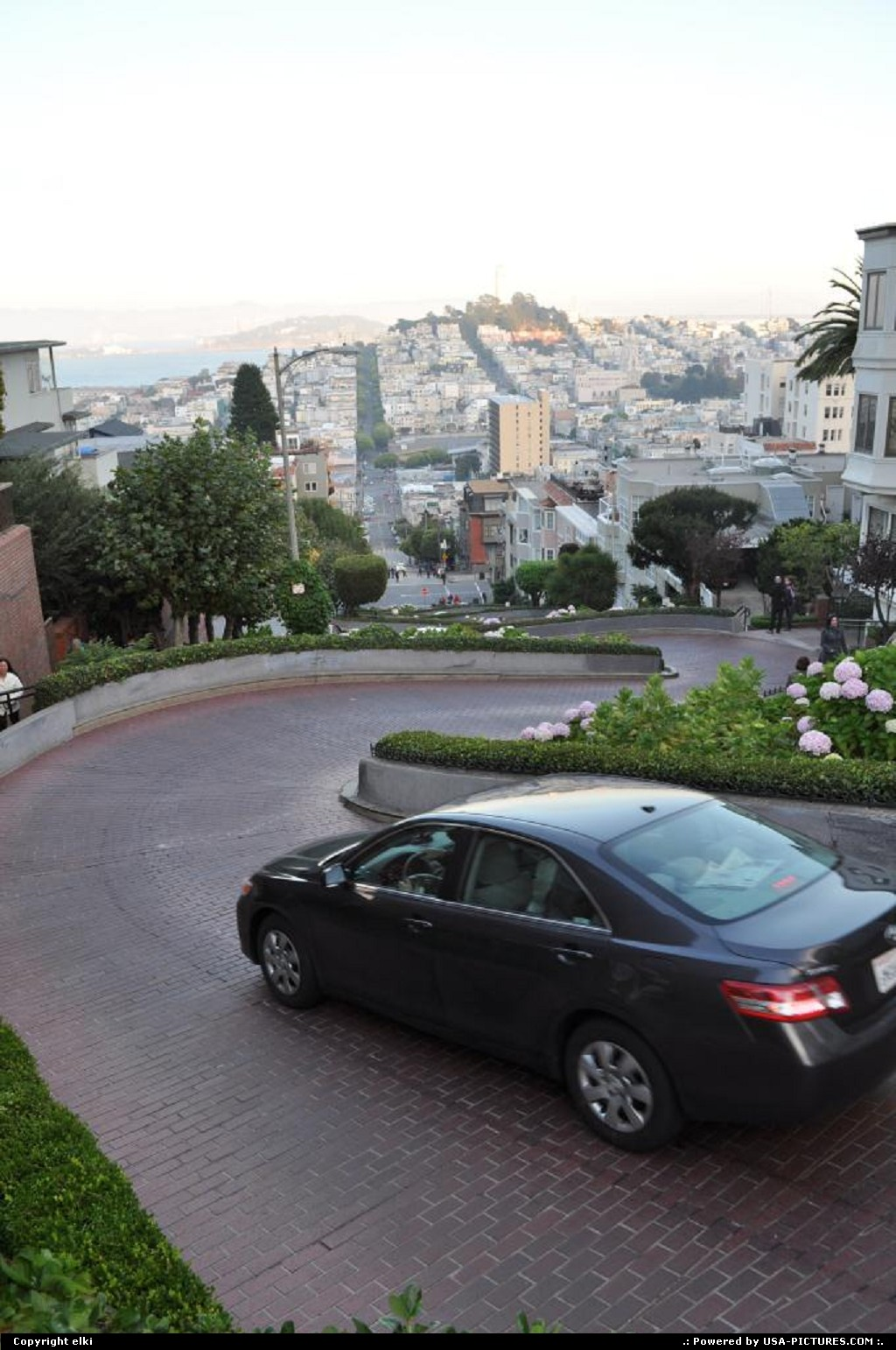 Picture by elki: San Francisco California   san fransisco california lombard street