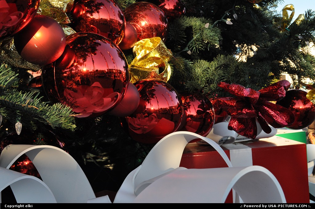 Picture by elki:San FranciscoCaliforniafishermanwharf, christmas tree