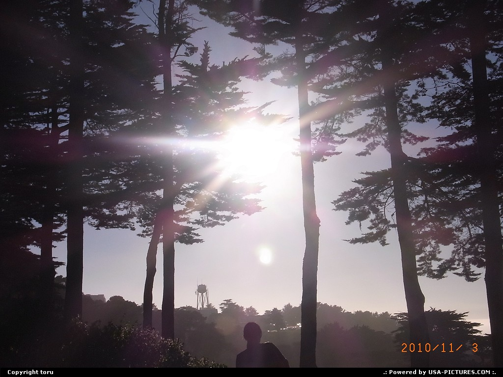 Picture by toru:San FranciscoCalifornia