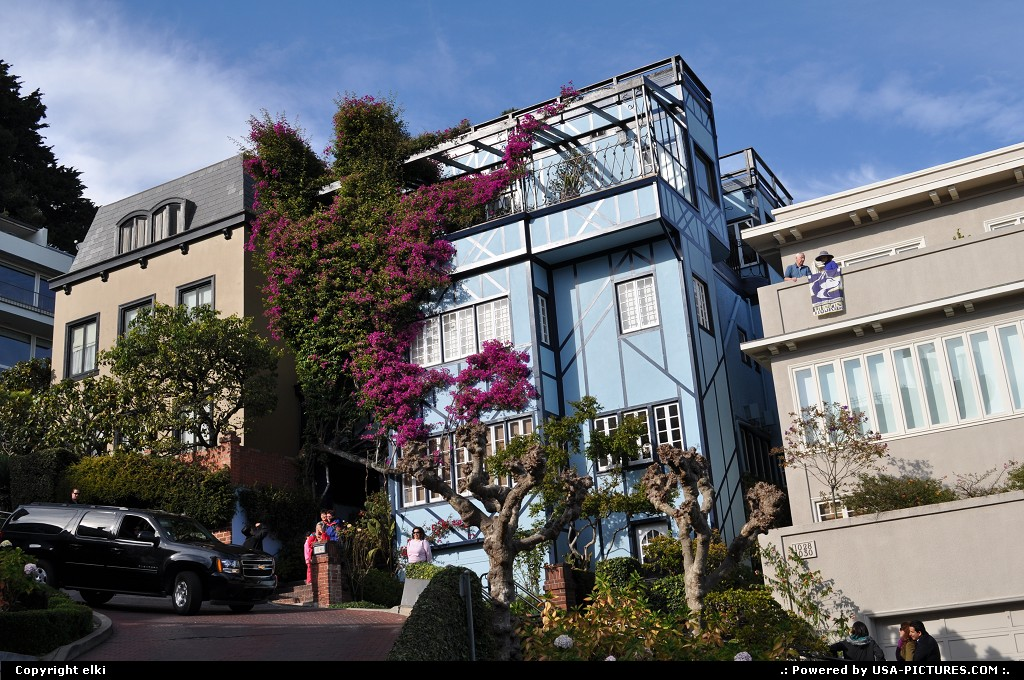 Picture by elki: San Francisco California   lombard street, houses, san francisco